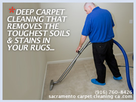 carpet deep steam cleaning